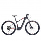 Gepida Ruga 1000 PT Deore 10 Electric Bike Grey/Red