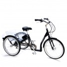Mission Cycles E-Mission Electric Tricycle